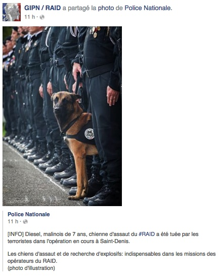 Police_Nationale