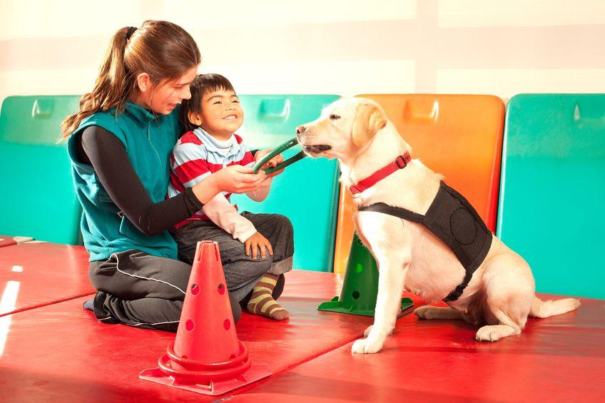 Dogoterapia - kojący wpływ zwierząt