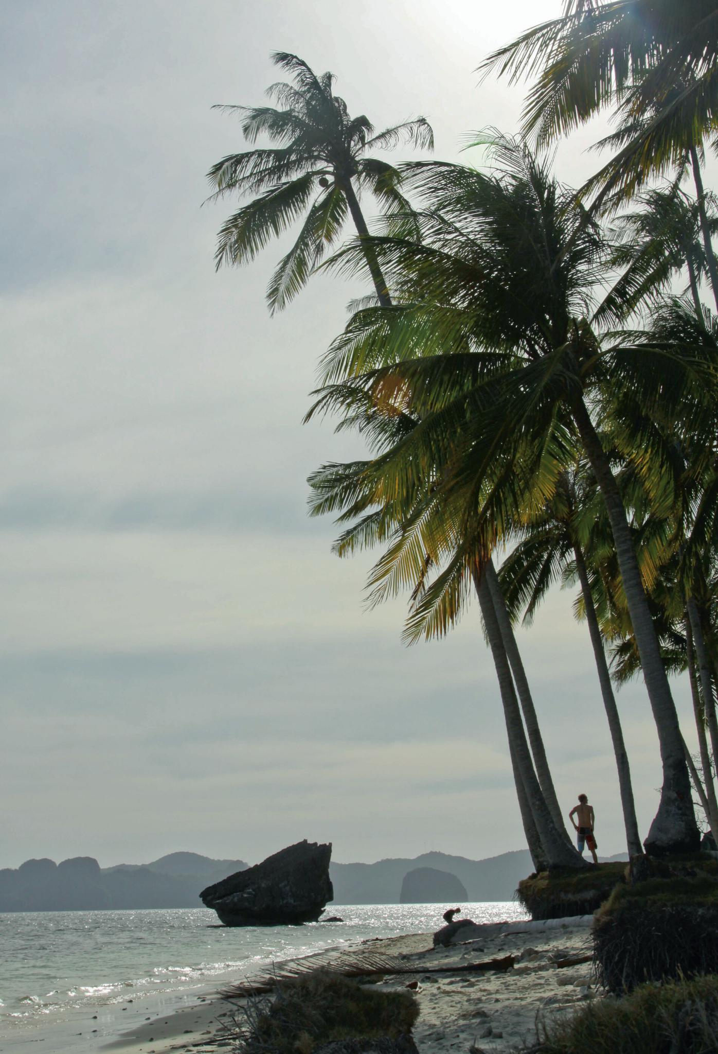 Palawan - światowe centrum słodkiego lenistwa