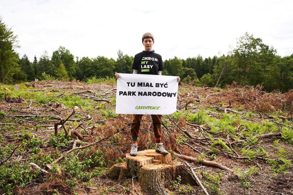 Petycje w obronie przyrody – jaki mają sens? Czy podpisując przyczyniamy się do zmian?