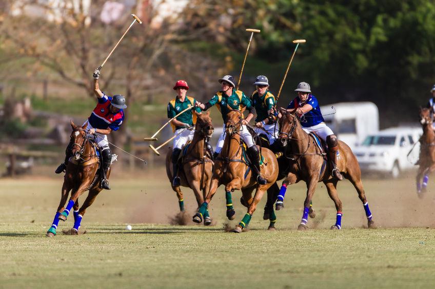 Końska dawka sportu: polo, horseball, kadryl