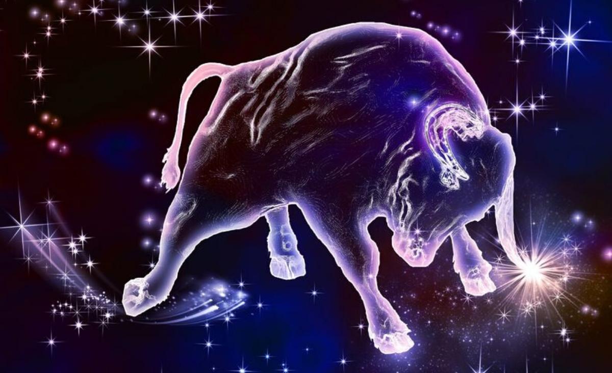 Mężczyzna Byk. Horoskop na walentynki