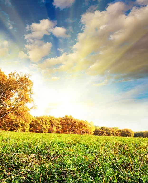 Czy październik może być zielony?