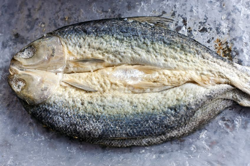 Bacalhau czyli dorsz