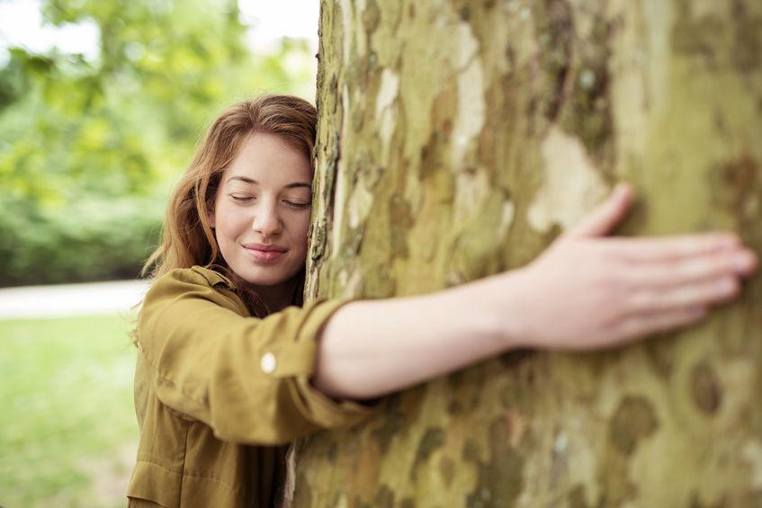 Dendroterapia. Drzewa, które leczą emocje