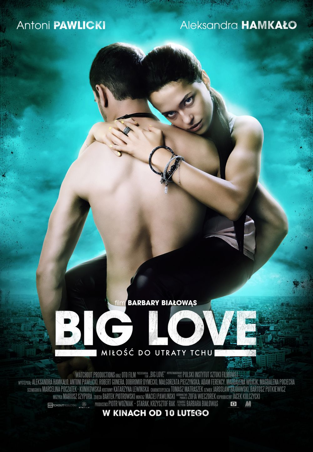 Big Love plakat filmu