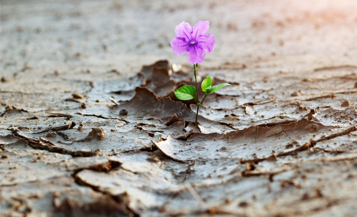 21 sposobów na pokonanie rozczarowań