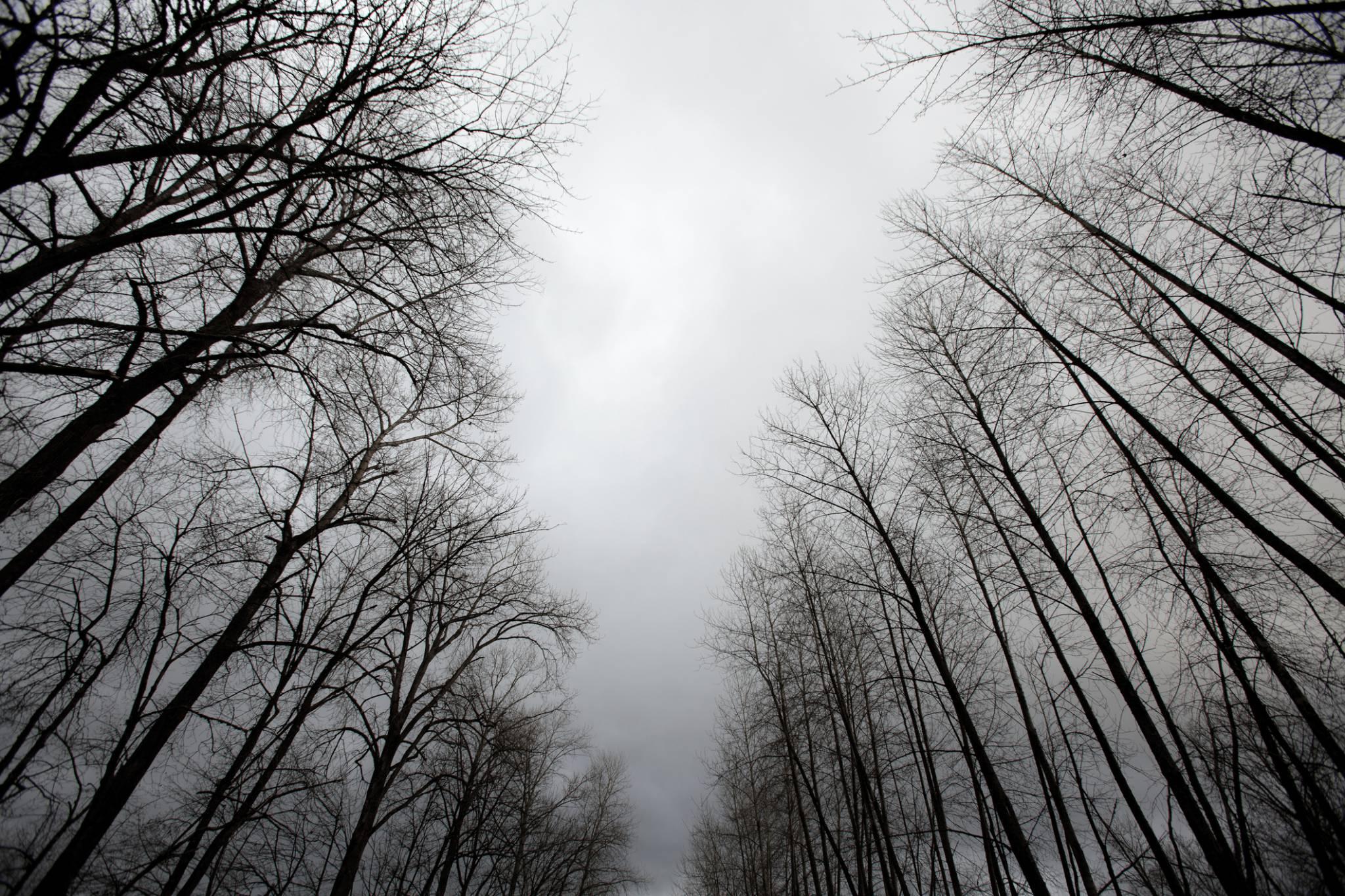 Etapy żałoby - jak przez nie przejść?