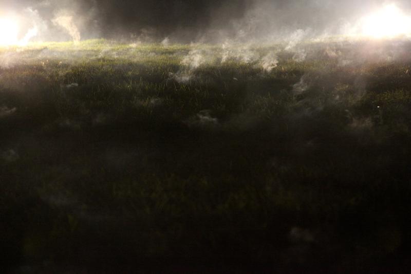 Joanna Rajkowska, Wymuszając cud, instalacja. Zlecenie i produkcja Frieze Foundation dla Frieze Projects 2012. Fot. Andrew Dixon. Dzięki uprzejmości Żak | Branicka, Berlin; l'étrangère, London.
