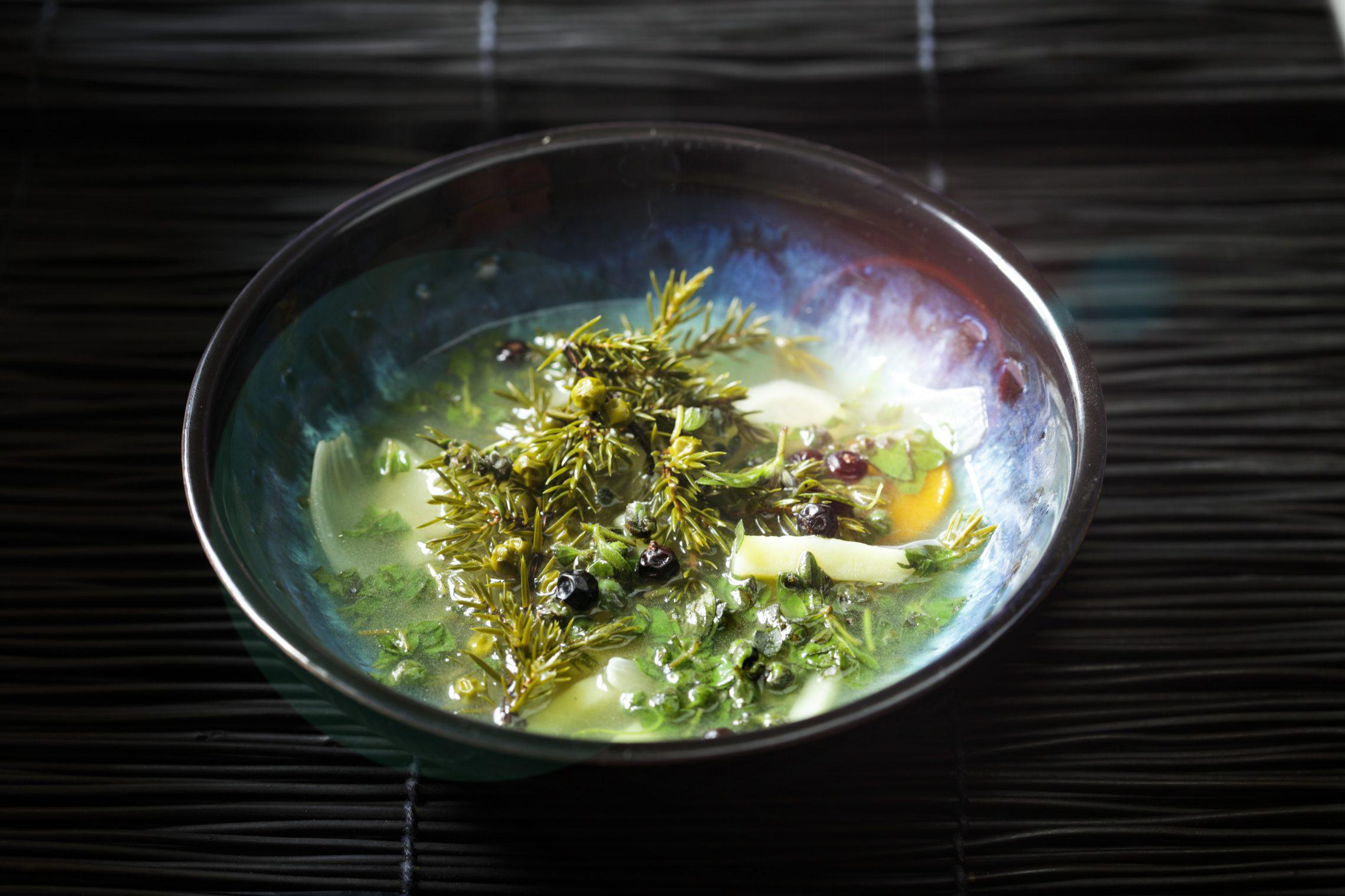 Zupa z jałowca
