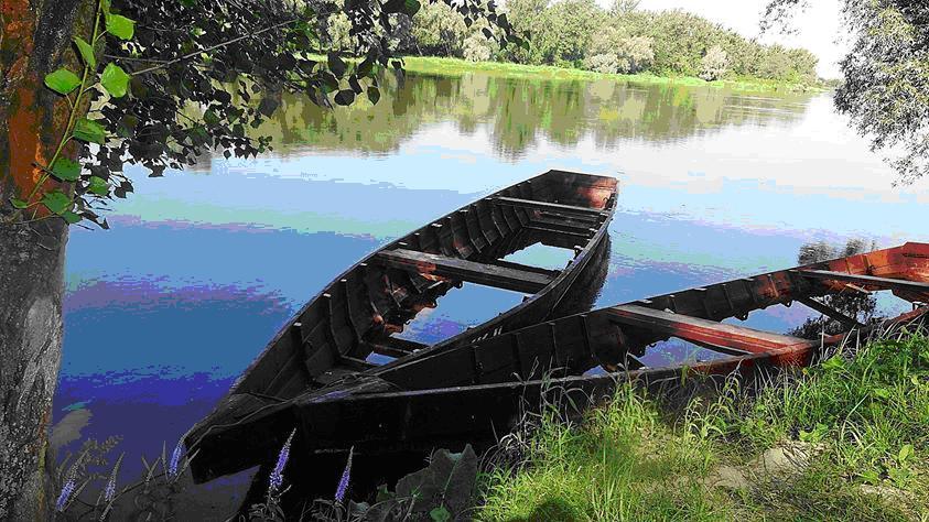 Najpiękniejsze rzeki w Polsce