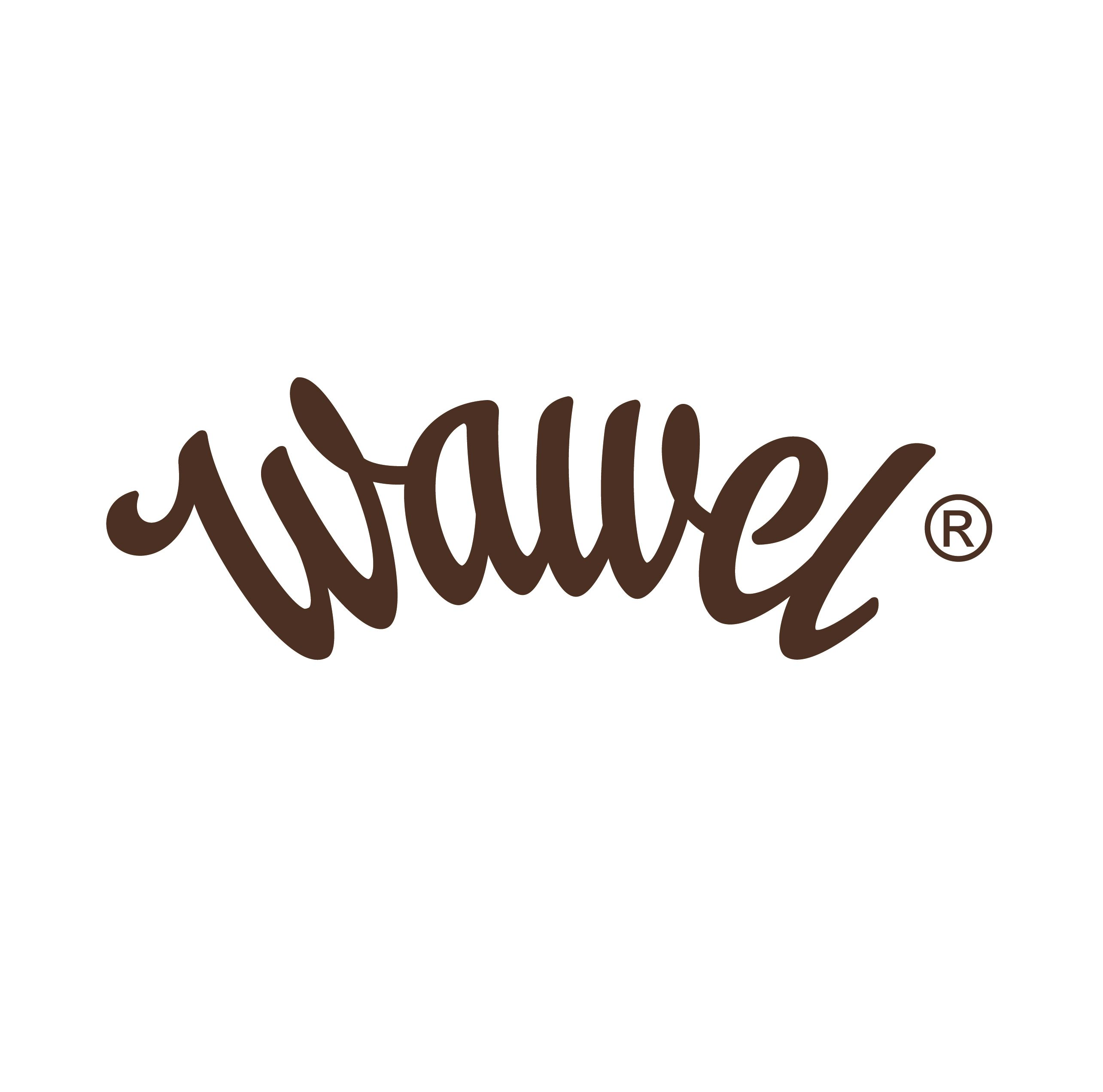 Wawel_logo_braz(1)
