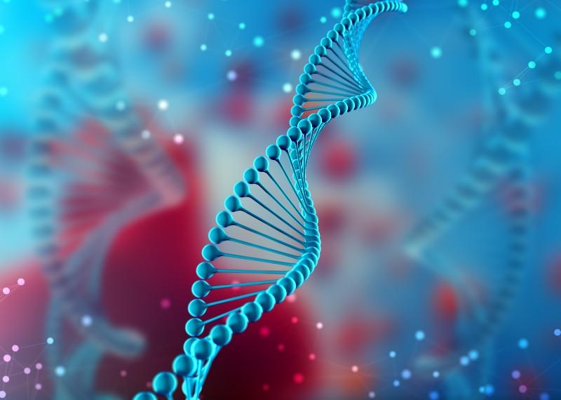 Geny - co dziedziczymy po dziadkach?
