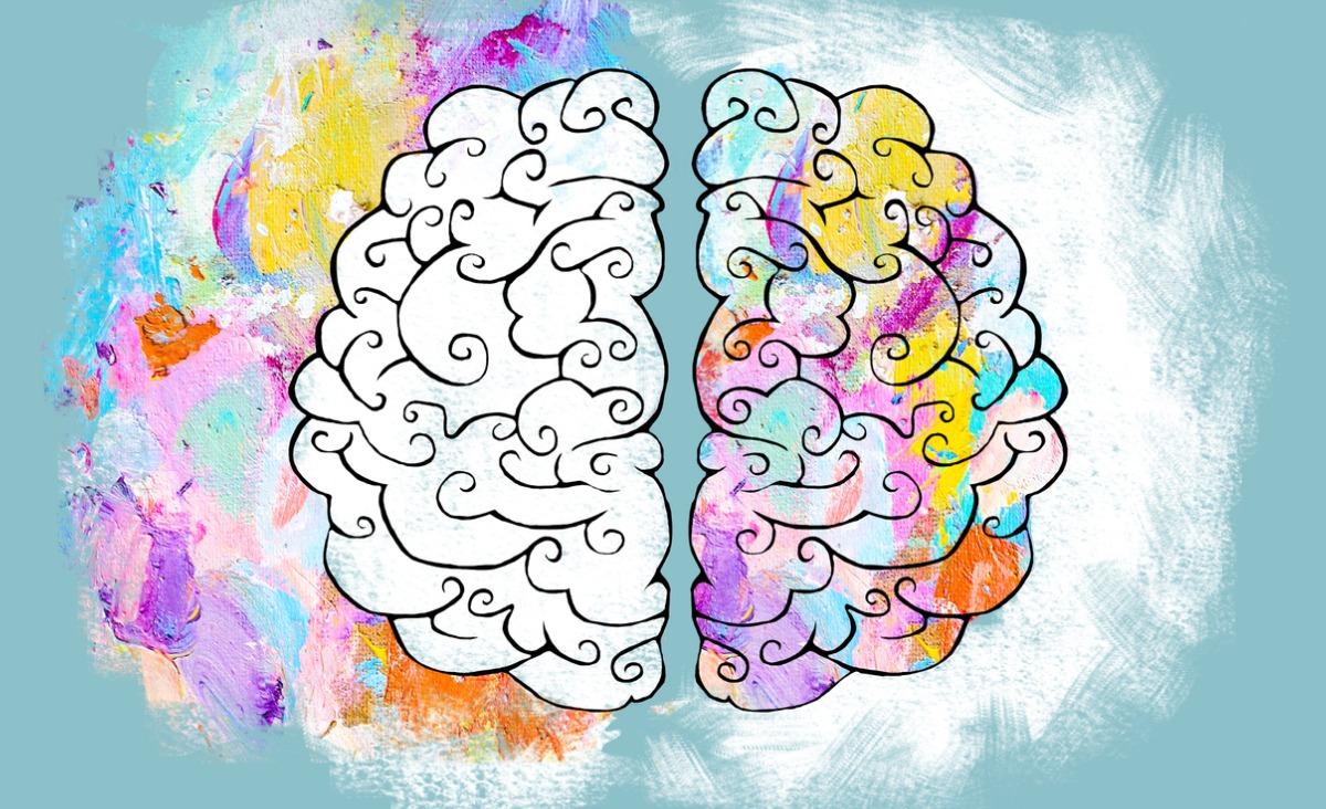 Półkule mózgu - jak z nich korzystać, aby obudzić kreatywność?