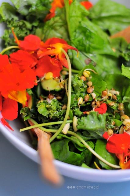 Sobczak: sałata z kwiatem
