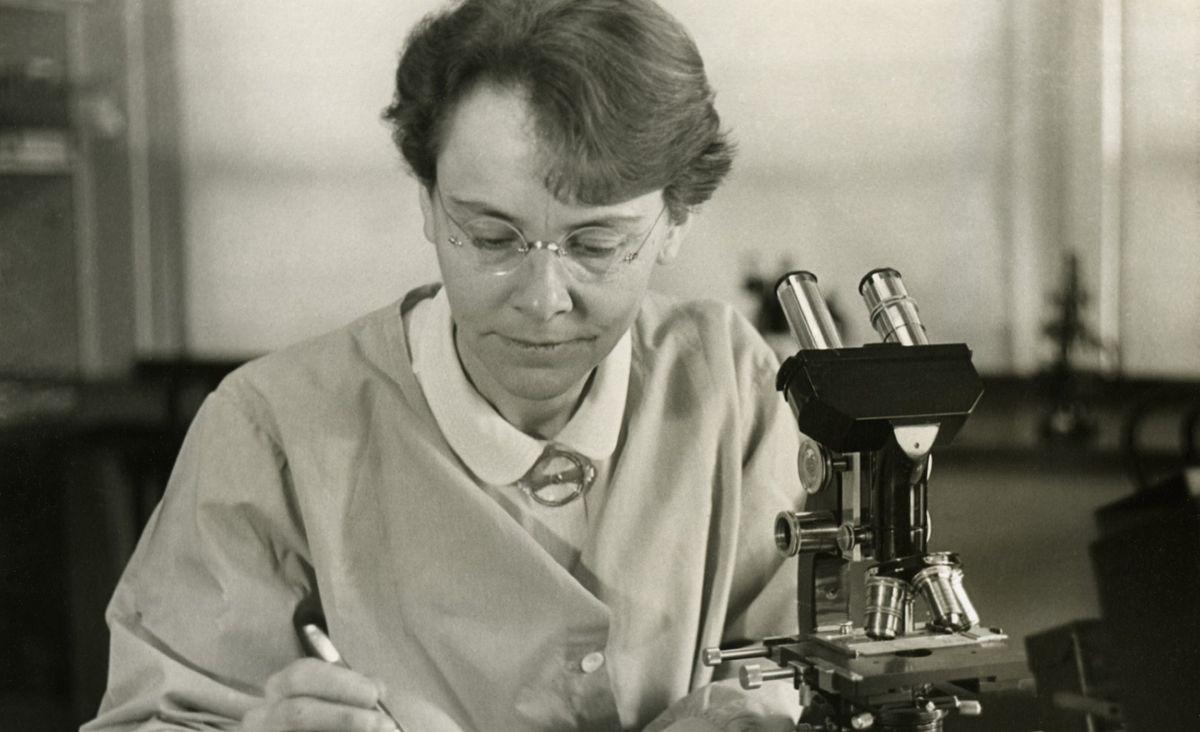 Sukcesy pisane szminką: Kobiety, które zmieniły świat