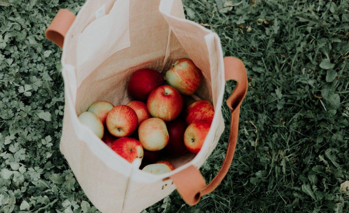 Dlaczego warto nosić torby bawełniane?