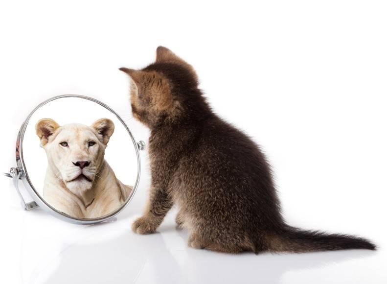 Świadomość tego, co naprawdę się liczy, pomoże przezwyciężyć obawy i wątpliwości. (Fot. iStock)