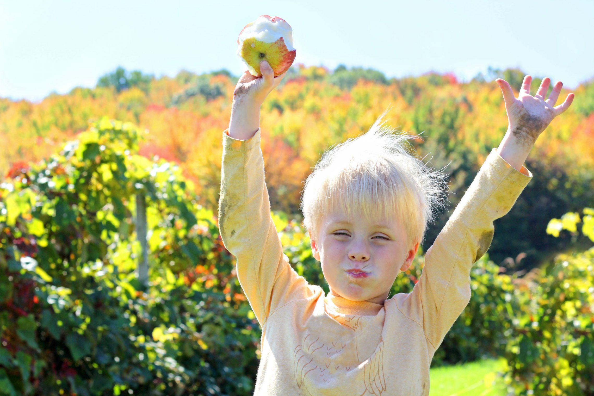 Zalecenia żywieniowe dla dzieci w wieku 1-3 lat