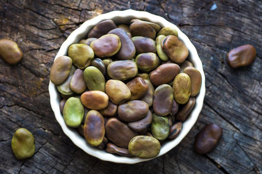 Bób - zielone źródło białka