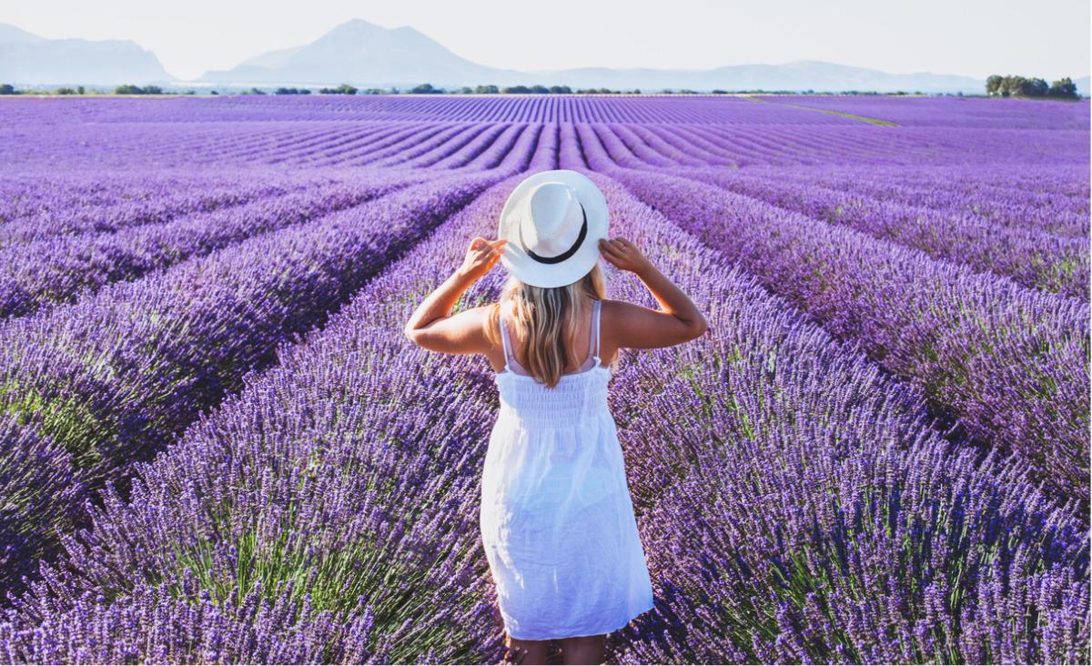Kwiatoterapia - szczęście i zdrowie z natury
