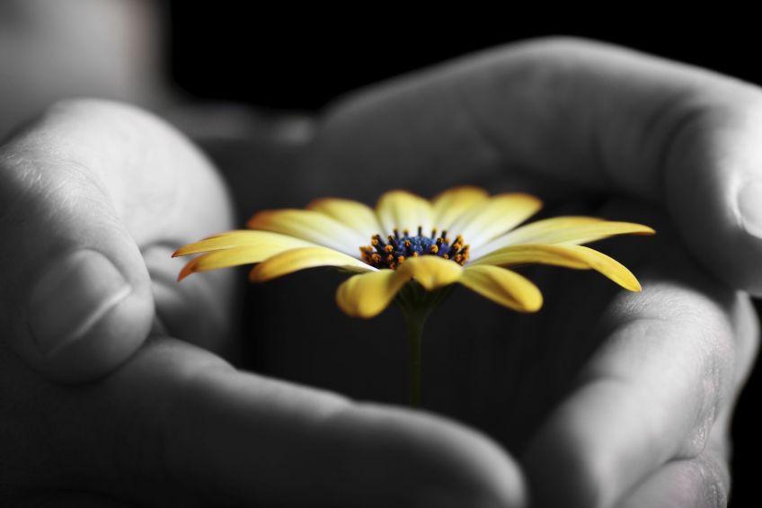 Nadzieja - zaproś ją do swojego życia