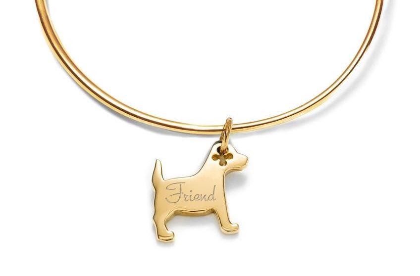Lilou dla wielbicieli psów