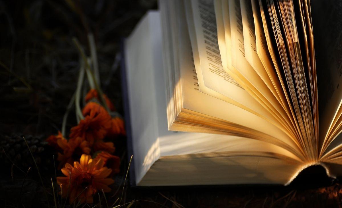 Najlepsze polskie kryminały. 6 powieści, po które warto sięgnąć