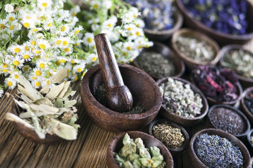 Zdrowe zioła na wzmocnienie organizmu
