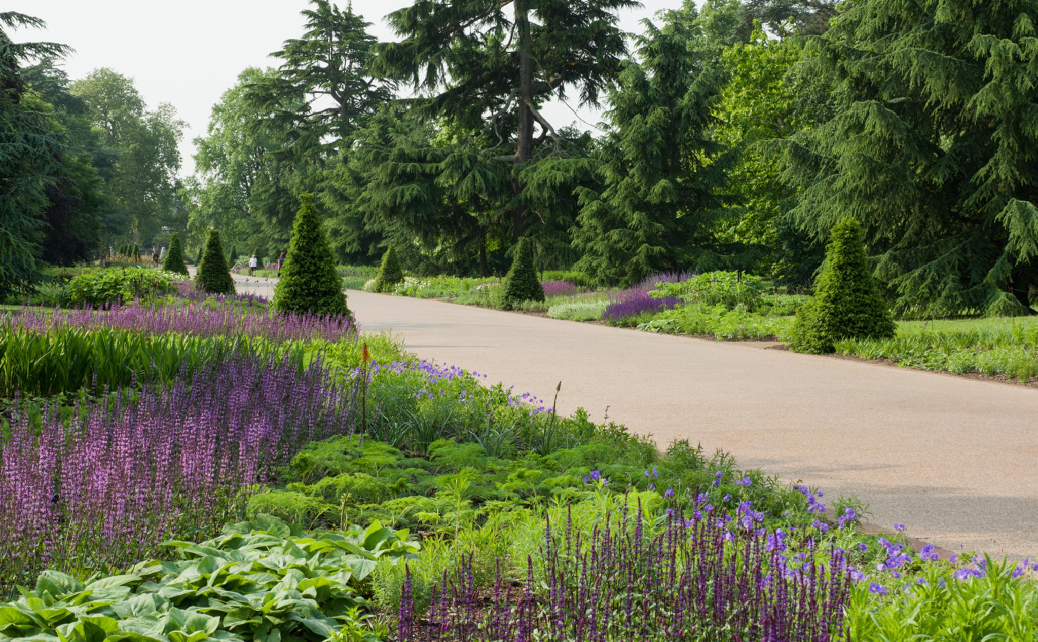 Dzięki żyjącym w Kew Gardens kolekcjom roślin i grzybów jest to najbardziej bioróżnorodny obszar na naszej planecie. (Fot. materiały prasowe)