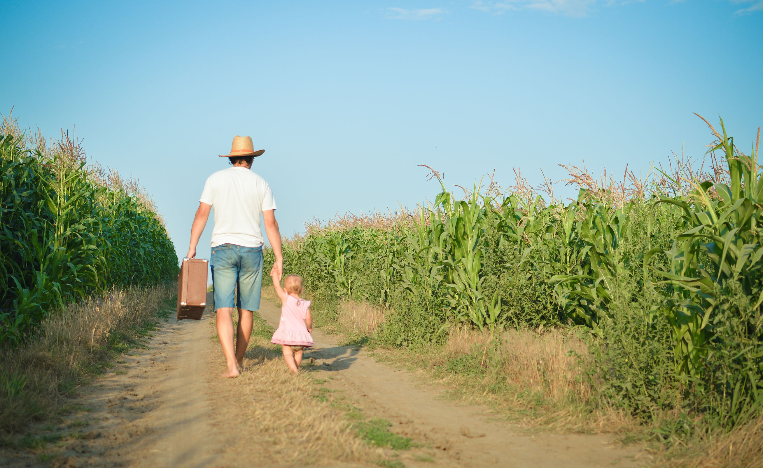 44653077 - man and babygirl walking away on road between corn field over blue sky outdoors background. backview of father carrying suitcase with daughter.