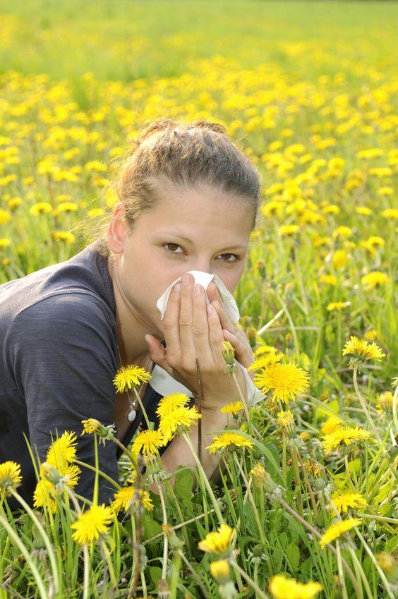 alergia.trawa