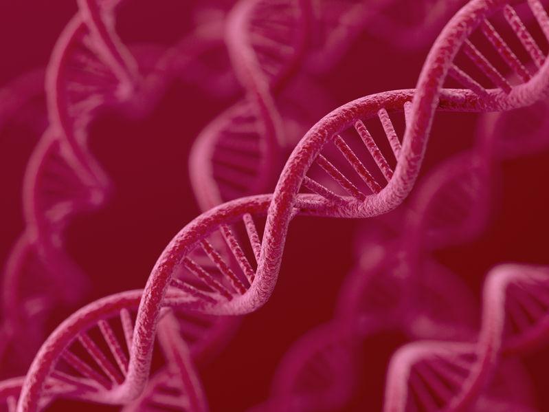 O czym może nam powiedzieć badanie DNA?