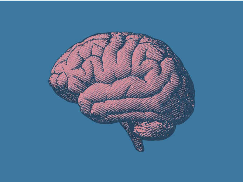 9 czynności, które poprawią pracę mózgu