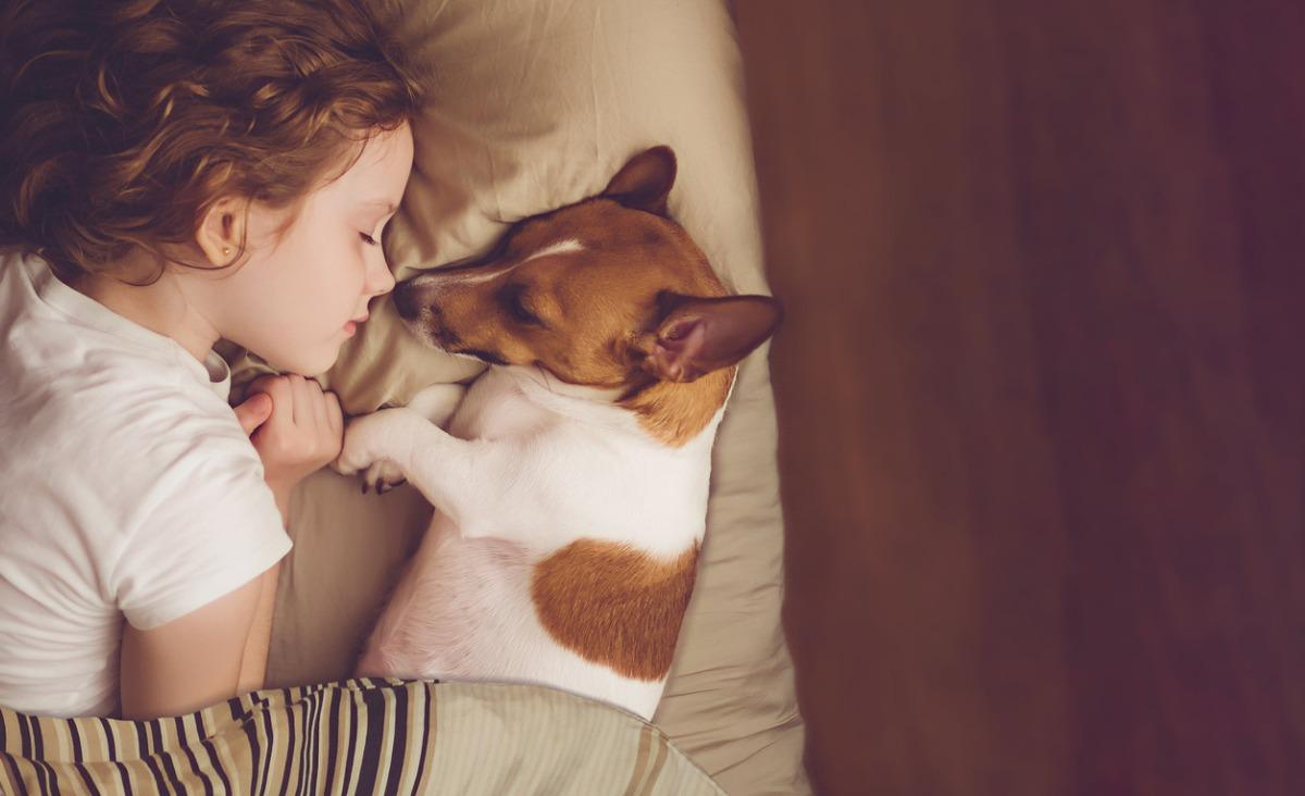 Pies i dziecko - jak wybrać psa do domu z dzieckiem i czy to dobry pomysł?