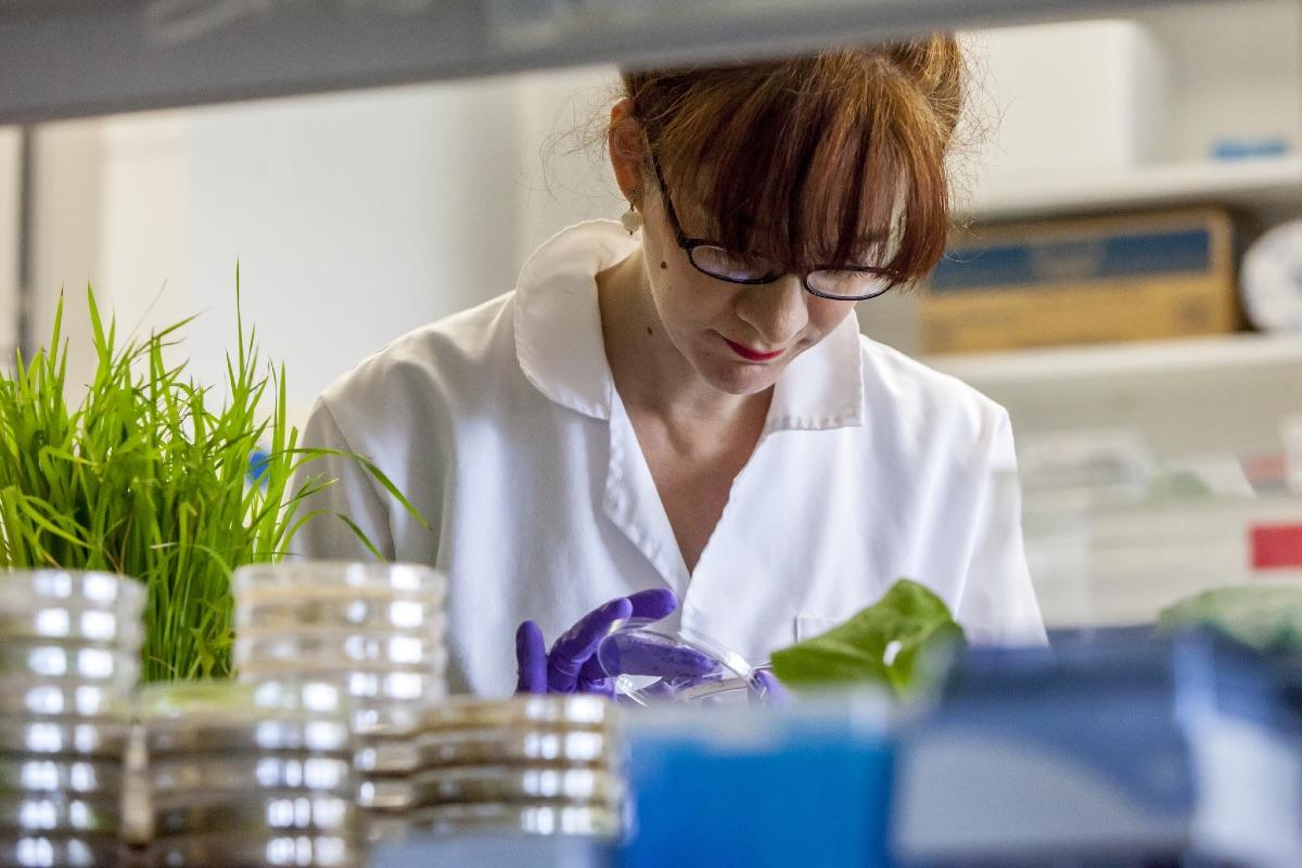 Naukowiec w laboratorium Jodrella. (Fot. Jeff Eden/materiały prasowe)
