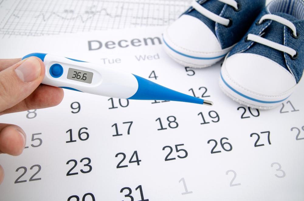 Przygotowania do ciąży – poznaj kalendarz owulacyjny!
