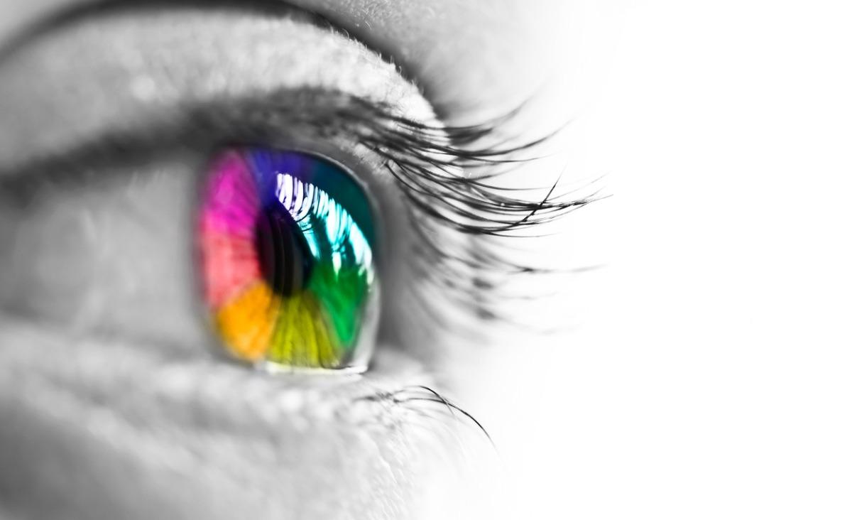 Kolor jest życiem