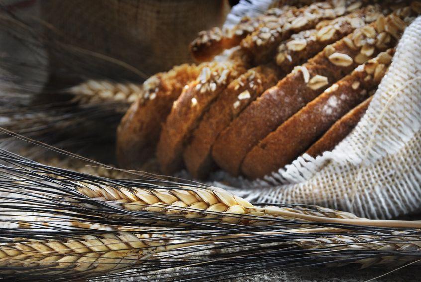 Czarownica, chleb i śmierć