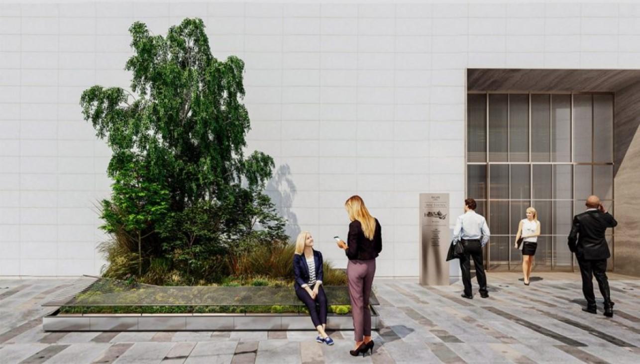 Drzewa, krzewy i rośliny dla miasta - nowy projekt Superverde
