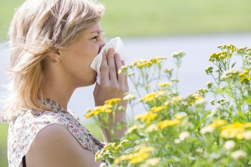 Porady na letnie alergie