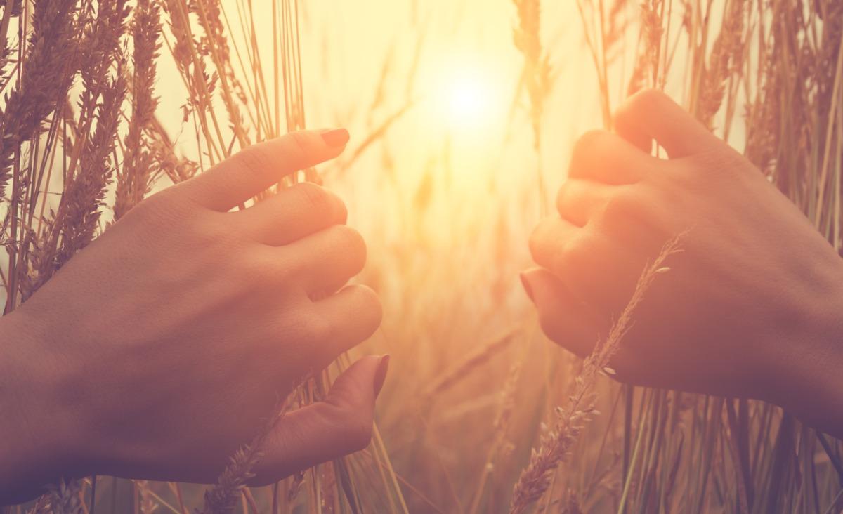 Odkryć swoje powołanie – powód, dla którego żyjemy