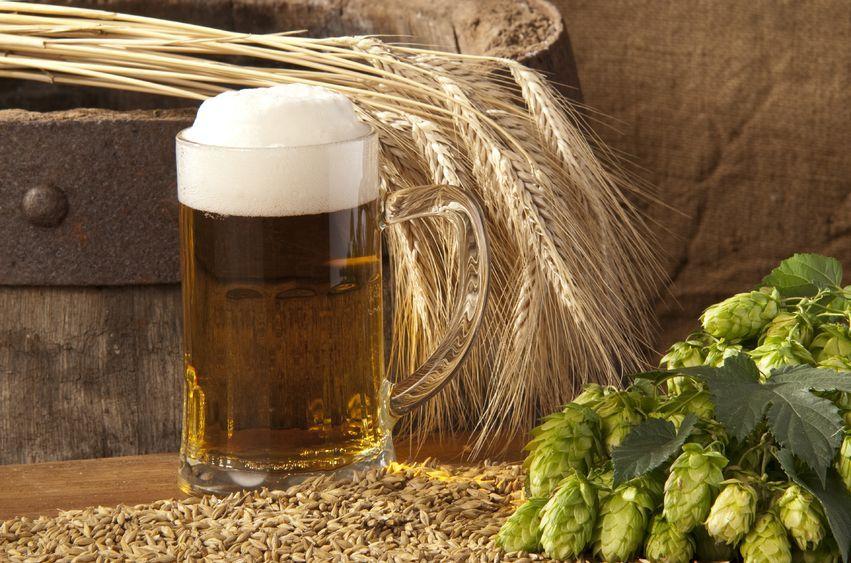 Piwo też nie lubi mrozu!