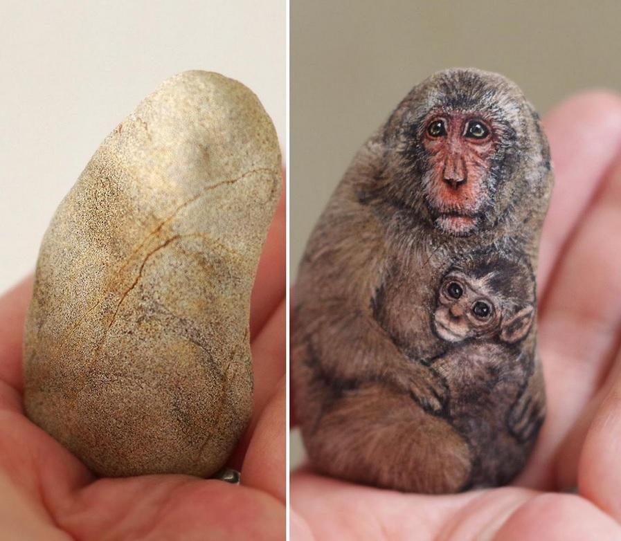 Kamienie pełne życia